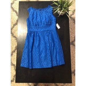 Blue lace Dress Barn dress